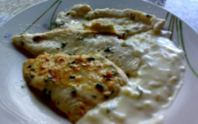 filetes de pollo a la plancha con salsa de nata