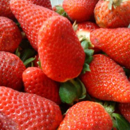 batido de fresas con helado