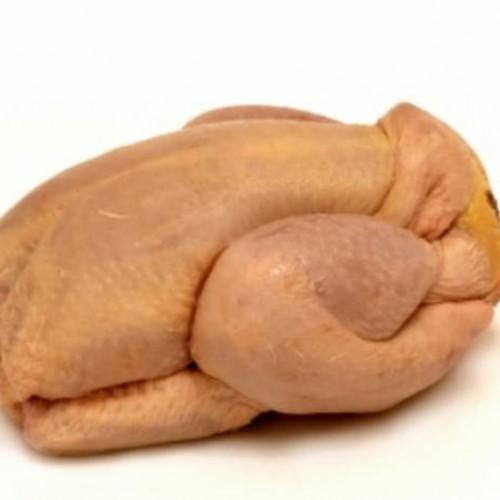 pollo escabechado