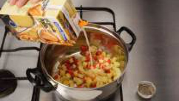 Segundo paso sopa rapida
