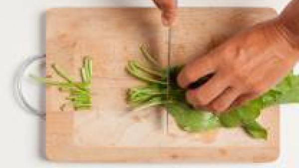 Lava y limpia las acelgas y, a continuación, dóralas en una sartén con un diente de ajo y el Tomate Frito Gallina Blanca durante 5 min. Sazona con sal y pimienta y espolvorea con las semillas para dec