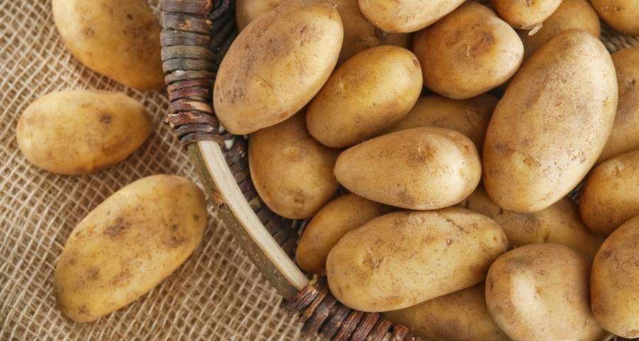 Patatas más tiernas